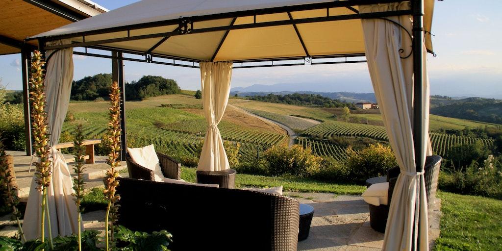 Fin vy över vinmarkerna