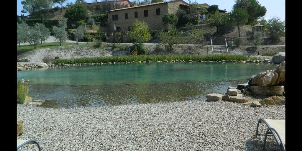 Der ökologische Pool