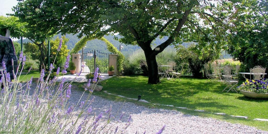 <p>Garten mit Lavendel</p>