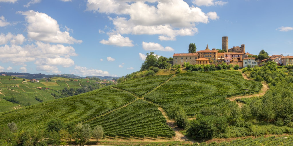The vineyard region of Piedmont