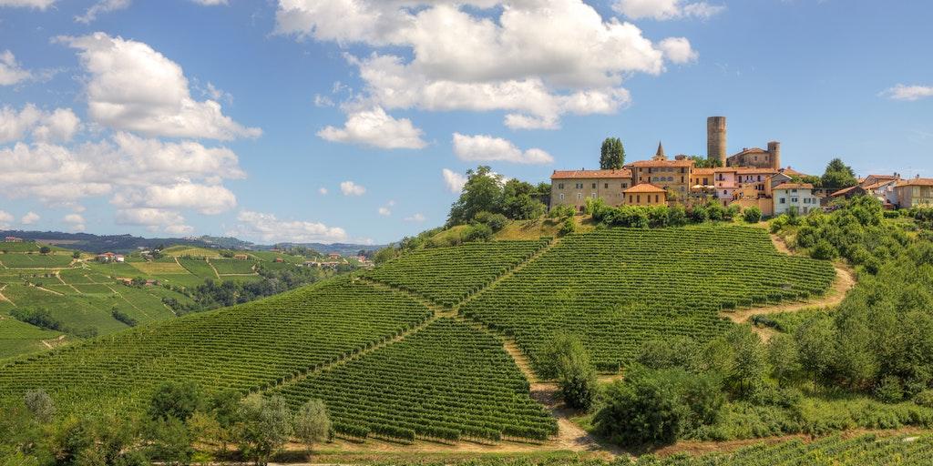 The vineyard region of Piedmont