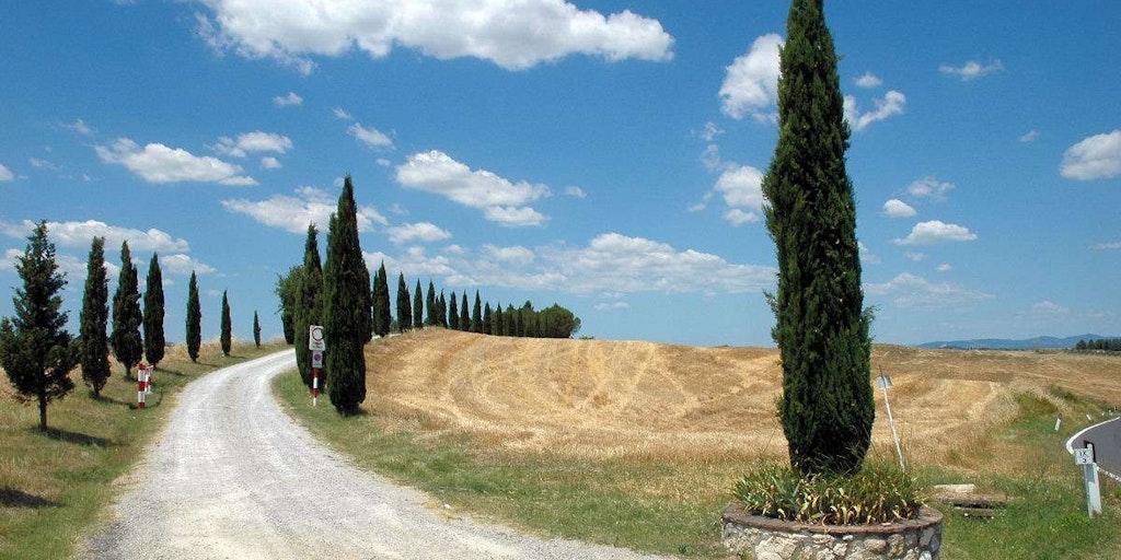Die Hügel von Siena