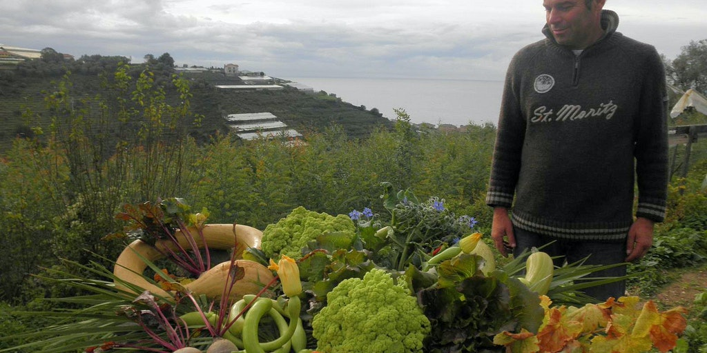 Nino épluche les légumes du jardin à Alla Collina sul Mare, Ligurie