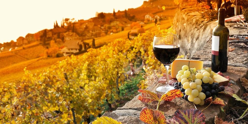 Vinmarker i Toscana
