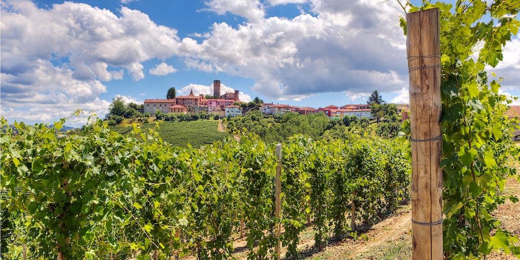 Piemonte produserer noen av Italias beste viner