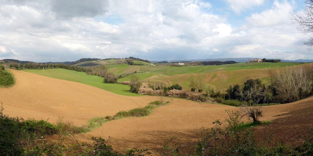 Landschaft Collesalvetti in der Toskana (foto: Wikimedia Commons, Lucarelli)