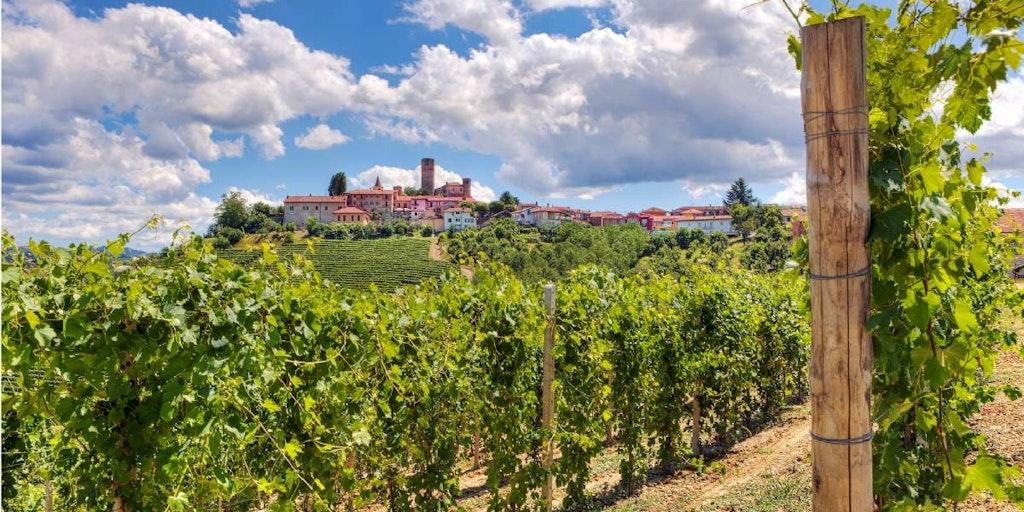 Resor till Piemonte för dig bland annat nära några av Europas bästa viner