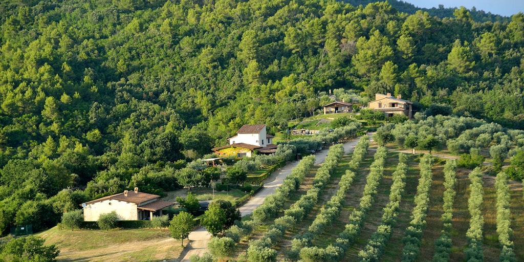 Luftaufnahme von Forte Sorgnanos Umgebung
