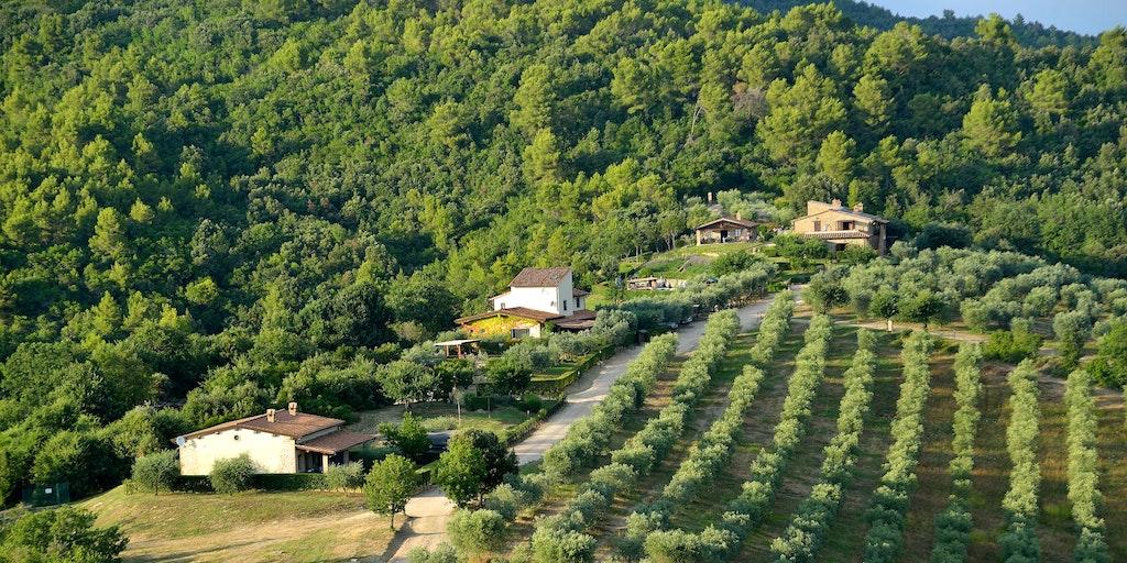 <p>Luftaufnahme von Forte Sorgnanos Umgebung</p>