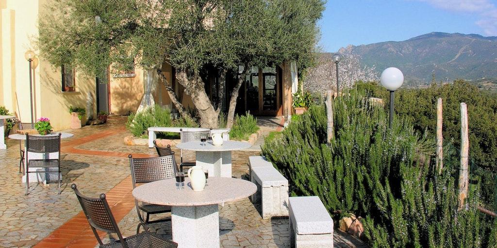 Olivenbäume, Rosmarin und viel Grün
