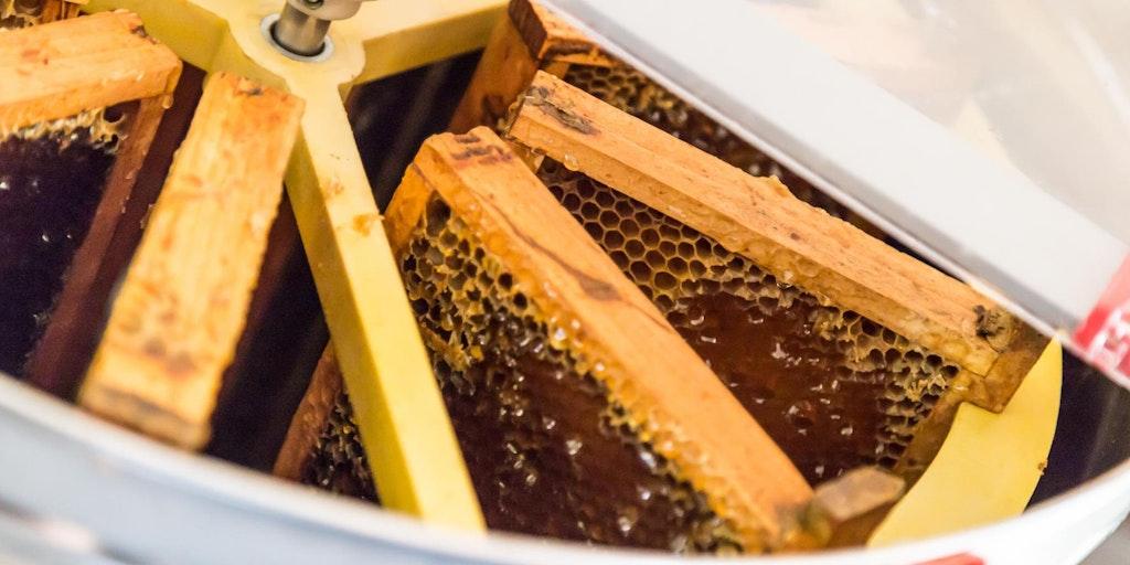 Udover god vin her produceres også honning