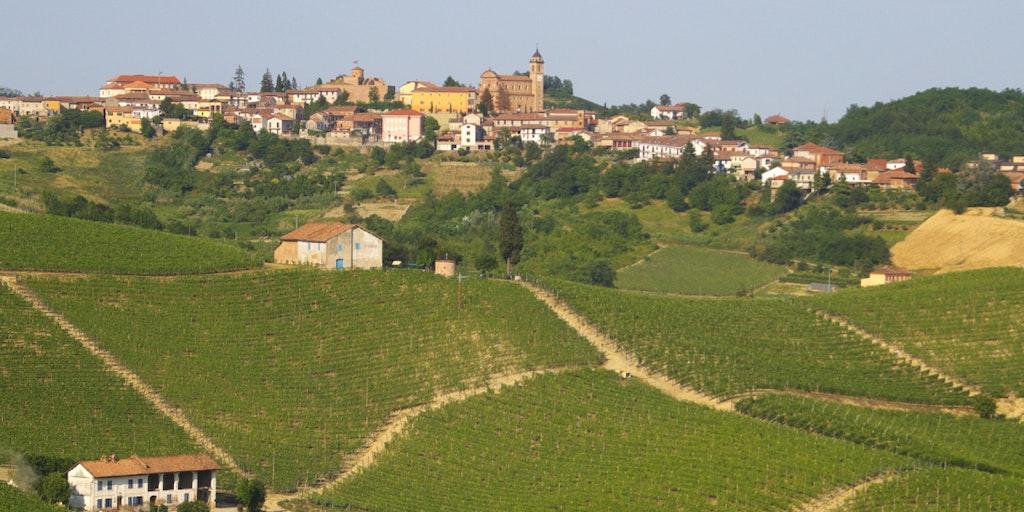 Castelnuovo Calcea i Asti vindistriktet