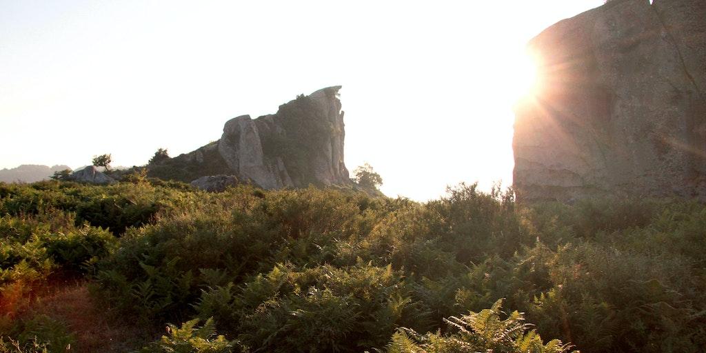 Solnedgangen på Sankt Hans aften afslører retning fra vest mod øst