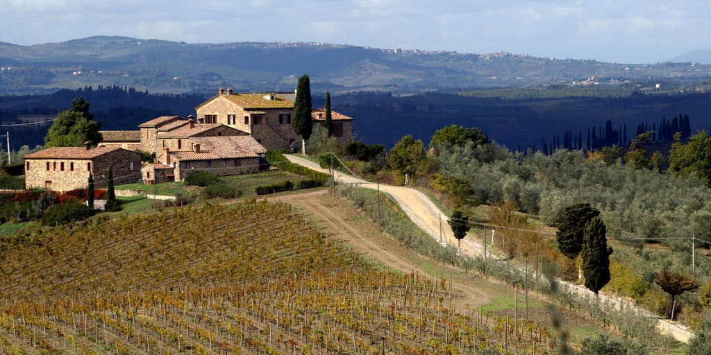 Vignoble Riserva di Fizzano