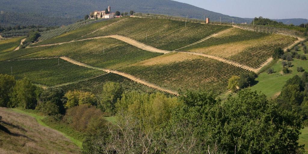 La vue depuis Torraccia di Chiusi