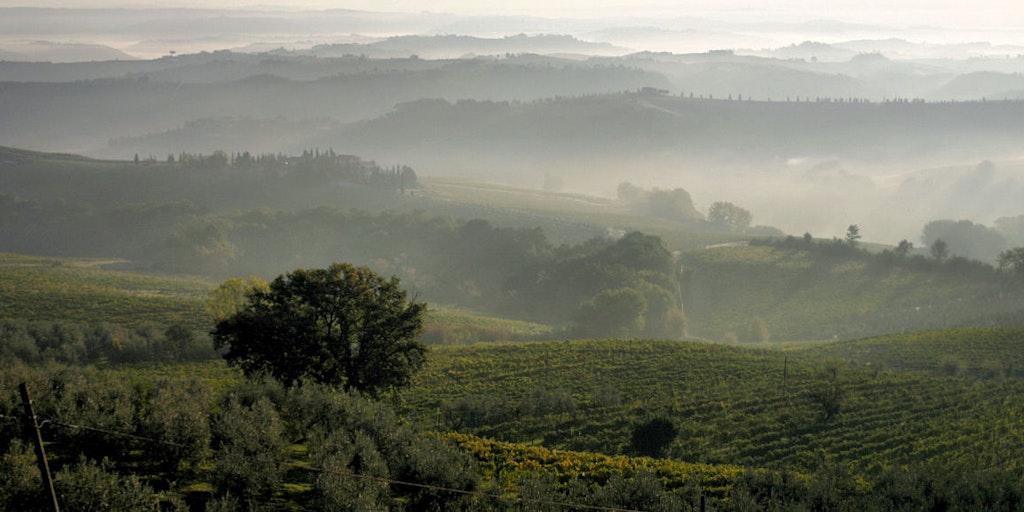 Région viticole du Chianti