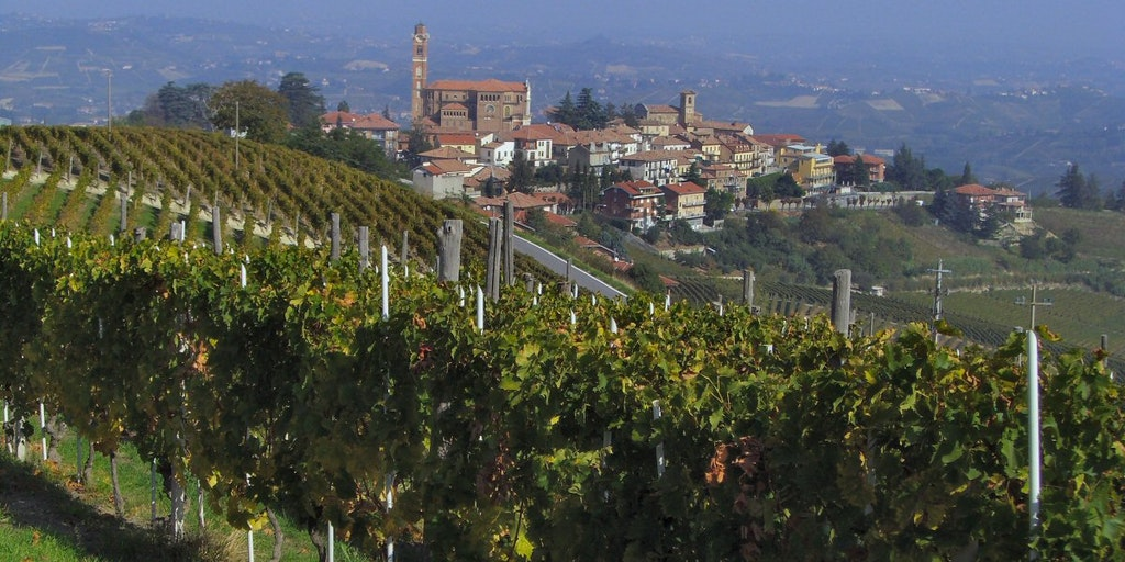Castiglione Tinella im Weinanbaugebiet Langhe
