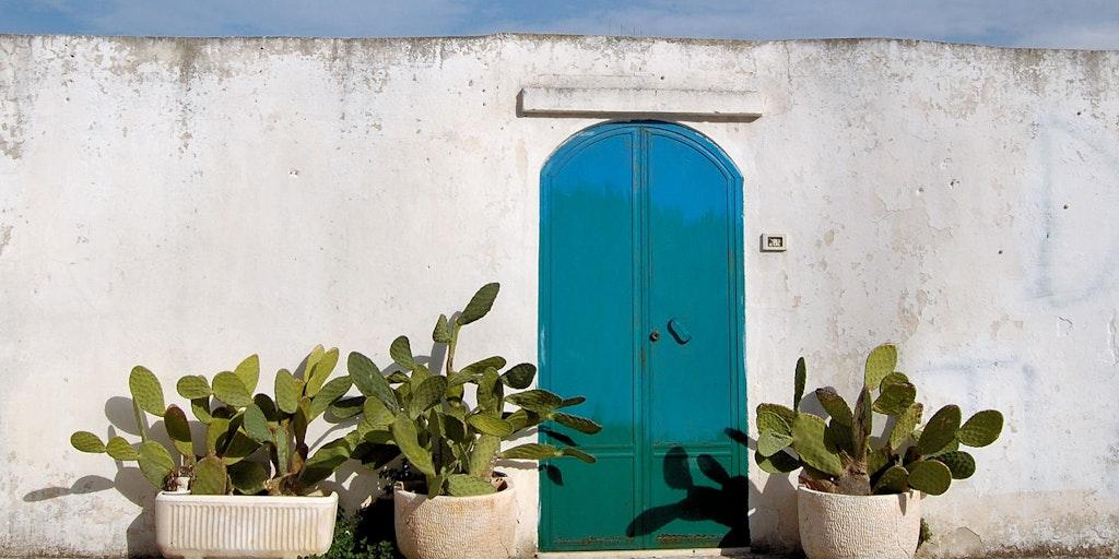 Le style du sud de l'Italie: des murs blancs et des cactus, ici à Ostuni