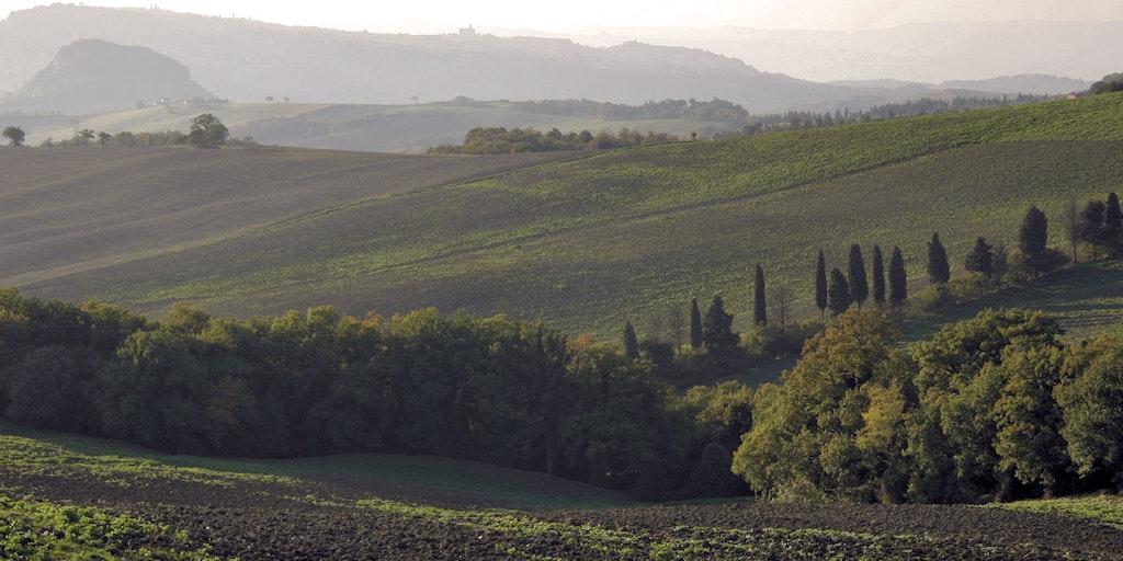 Landskabet mod Volterra