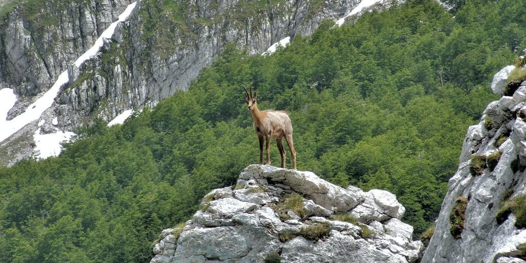 Naturen bjuder på oförglömliga upplevelser i Abruzzo
