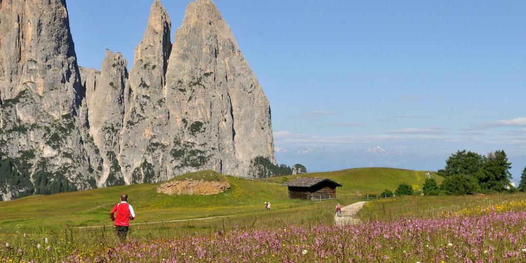 Steile Berge und saftige Wiesen in schöner Harmonie