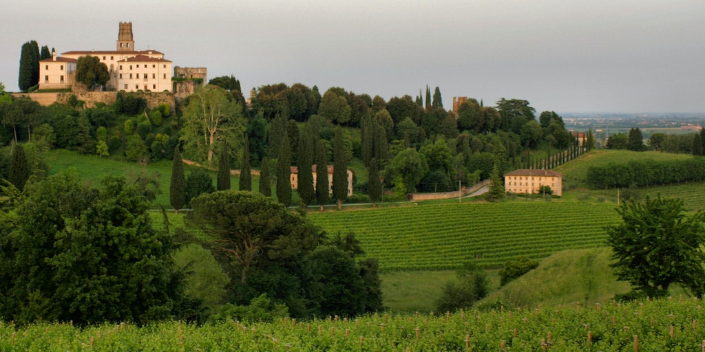Venetos rikholdige vinlandskap