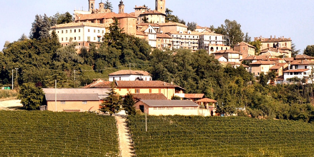 Fattoria San Giuliano at the foot of Neive