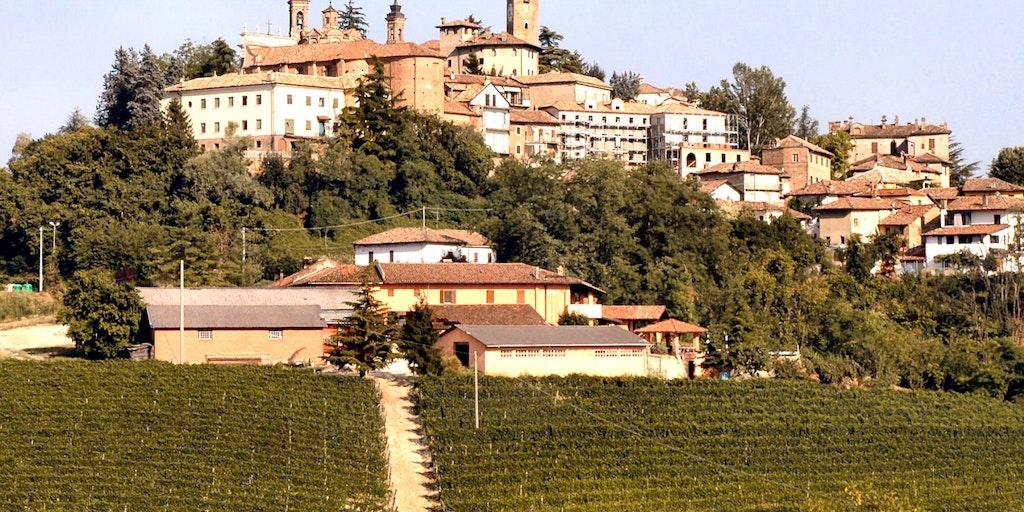 Fattoria San Giuliano at the foot of Neive
