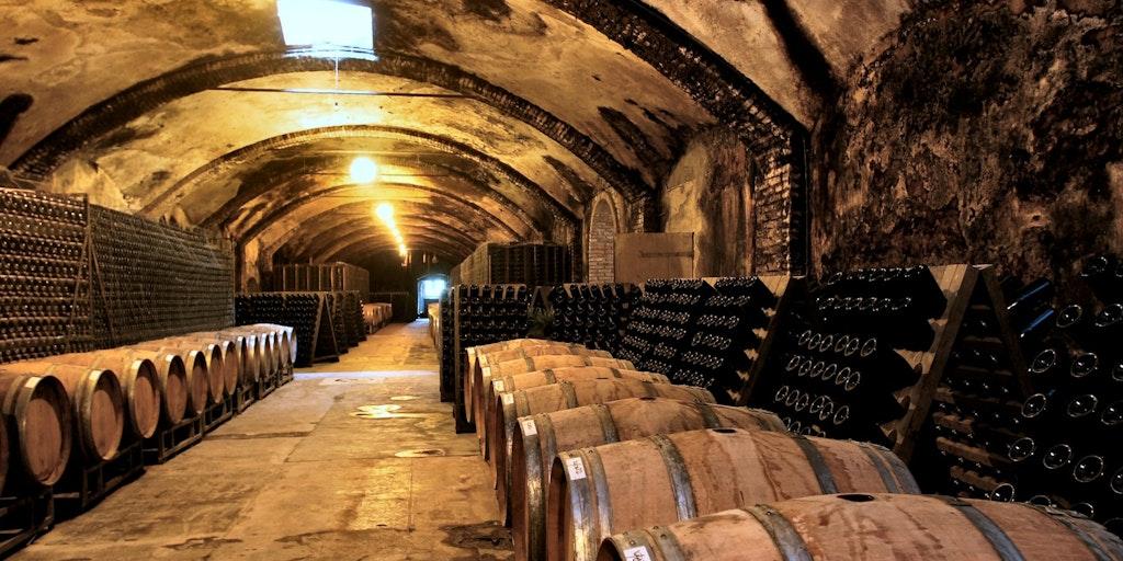 Der Weinkeller Villa Sparina