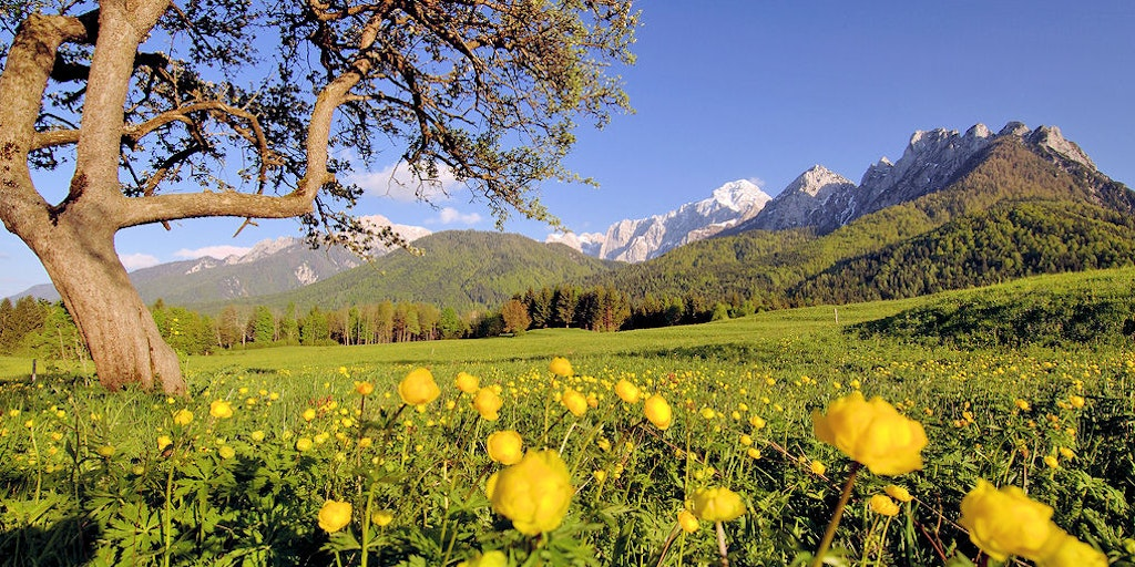 Friuli offers breathtaking scenery