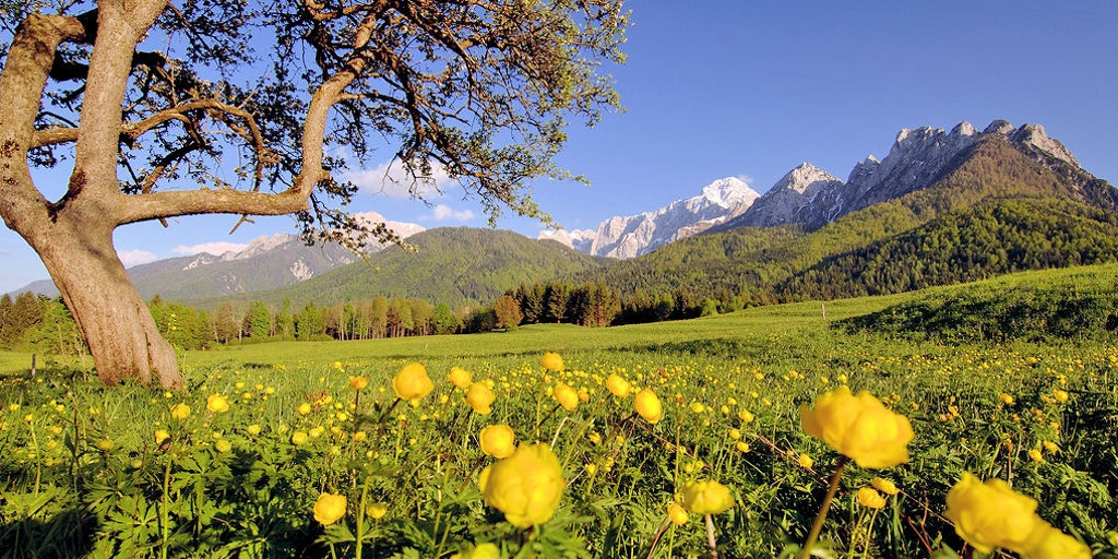 Friuli byr på utrolig natur