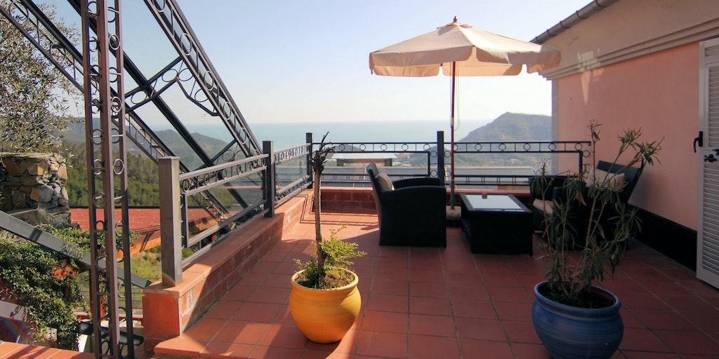 Caligo's terrace
