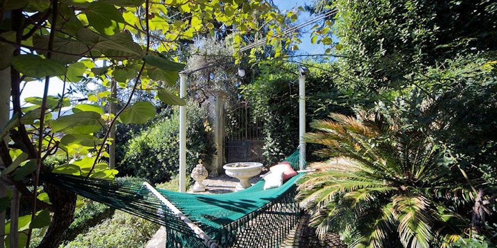 Jardin exotique avec arbres fruitiers