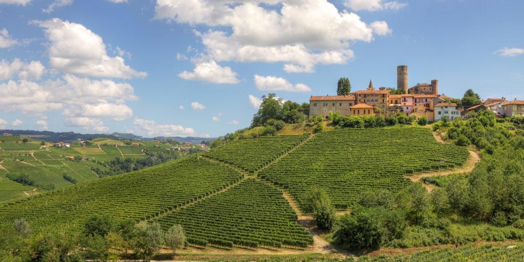 Castiglione Falletto in der Weingegend Langhe