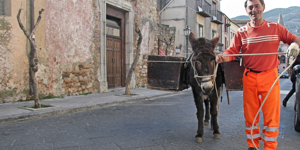 Mario leads the donkey Valentina in city streets
