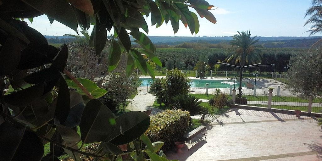 La piscine au coeur d'un jardin luxuriant