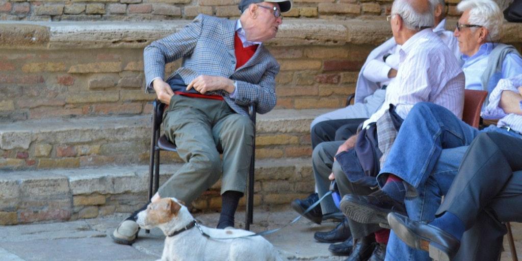 The elderly gossip in the shade